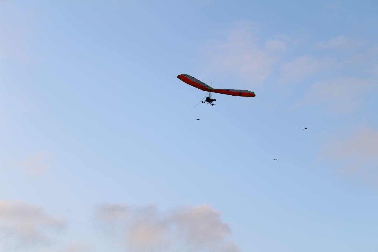 Volando Biplaza junto a las gaviotas